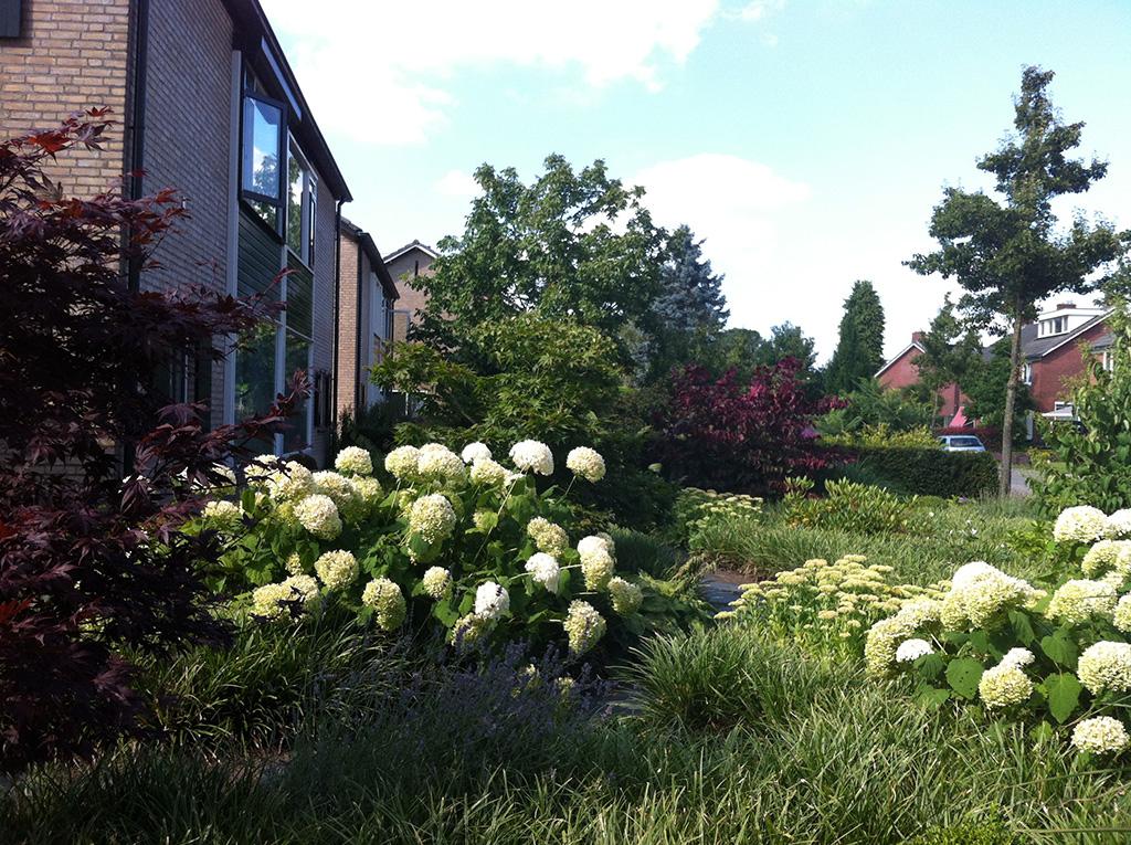 Keramische tegels tuinen met ronde vormen for Tuinen aanleggen foto s