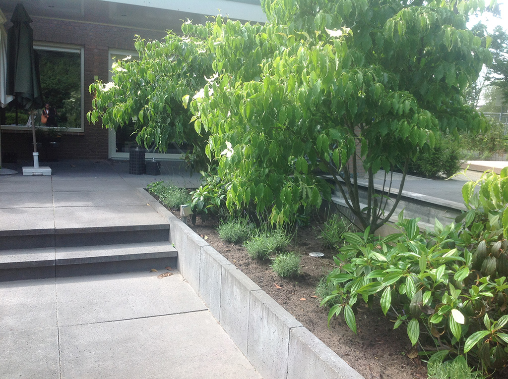 Tegels Laten Leggen : Keramische tegels aanleg tuin met jeu de boules baantje