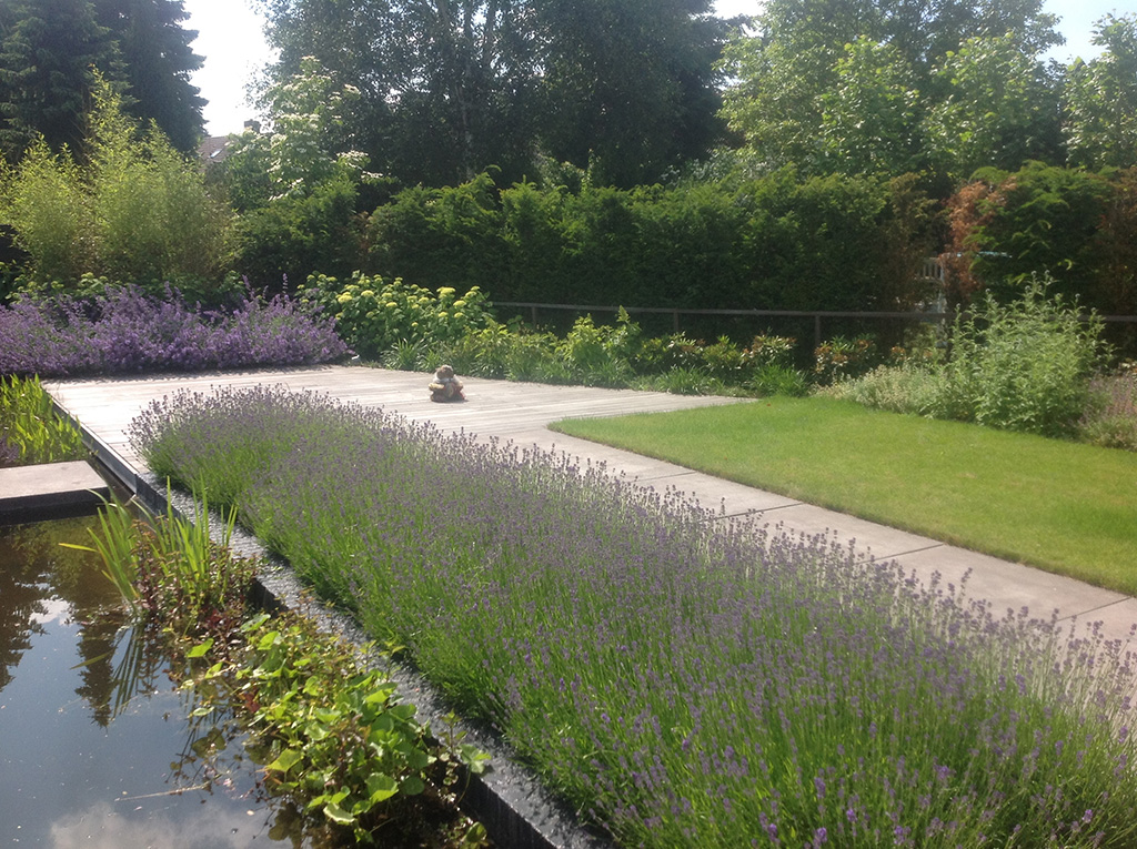 Keramische tegels moderne strakke tuin aanleggen tilburg for Moderne tuin aanleggen